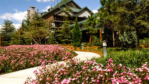 Boulder Ridge - Wilderness Lodge